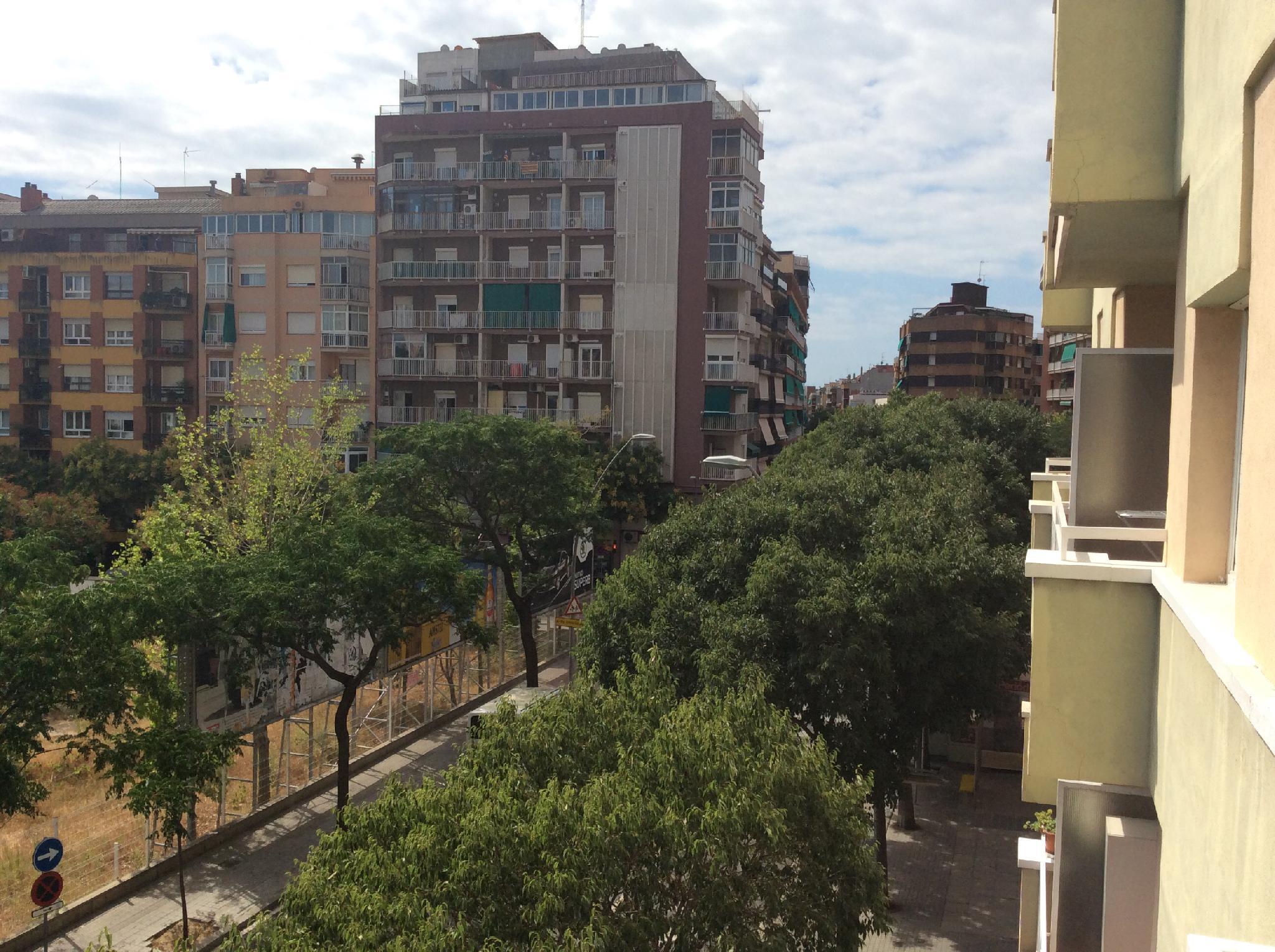 petit-appartement-de-vente-a-junto-plaza-mossen-clapes-sant-andreu-de-palomar-a-barcelona-209905859