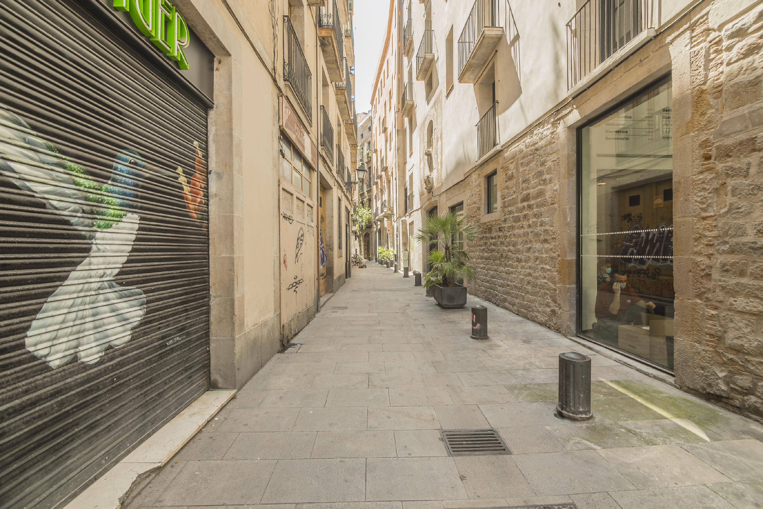 241111 Flat for sale in Ciutat Vella, Barri Gótic 38