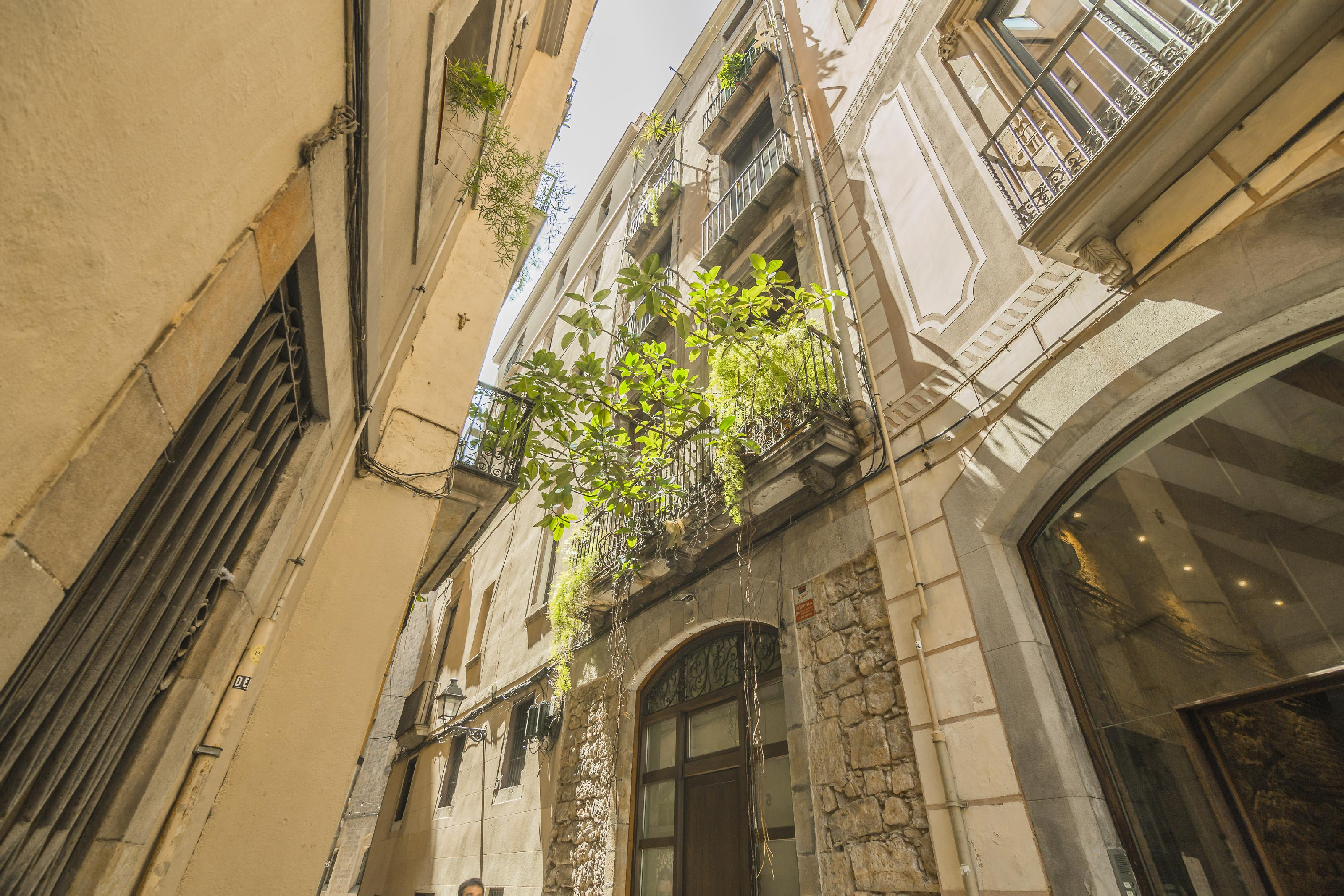 241111 Flat for sale in Ciutat Vella, Barri Gótic 6